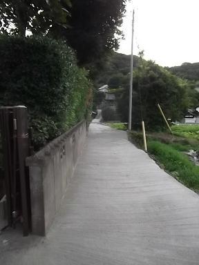 f:id:fujiwarakominka:20110709185020j:image