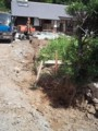 f:id:fujiwarakominka:20110714095923j:image:medium