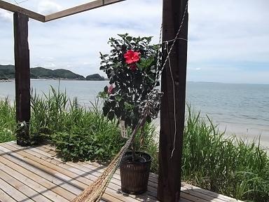 f:id:fujiwarakominka:20110714121349j:image