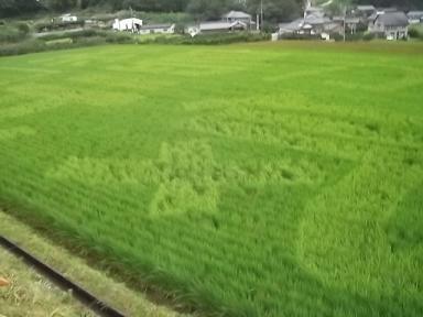 f:id:fujiwarakominka:20110904074342j:image