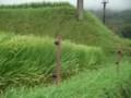 f:id:fujiwarakominka:20110904075820j:image:medium