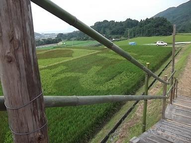 f:id:fujiwarakominka:20110909164107j:image