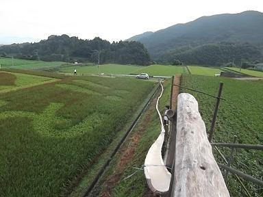 f:id:fujiwarakominka:20110911074409j:image