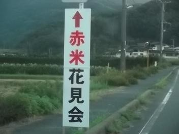 f:id:fujiwarakominka:20110912181657j:image