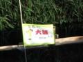 f:id:fujiwarakominka:20110913075219j:image:medium