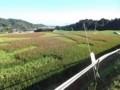 f:id:fujiwarakominka:20110913075254j:image:medium