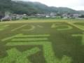 f:id:fujiwarakominka:20110918144906j:image:medium
