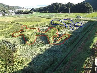 f:id:fujiwarakominka:20110923074248j:image
