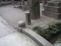 f:id:fujiwarakominka:20111102125652j:image:medium