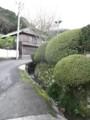 f:id:fujiwarakominka:20111106151111j:image:medium
