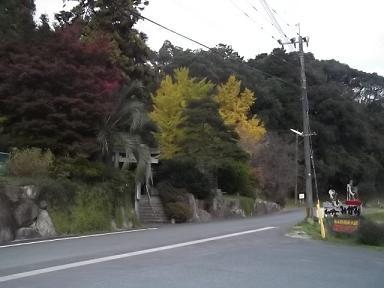 f:id:fujiwarakominka:20111125163122j:image