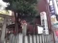 f:id:fujiwarakominka:20120415134149j:image:medium