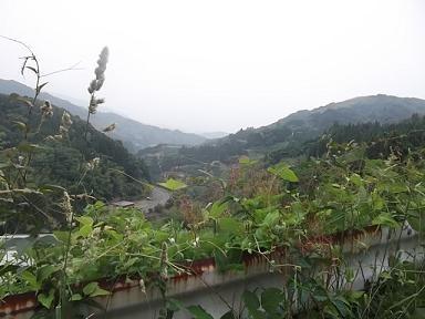 f:id:fujiwarakominka:20120530132857j:image