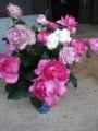f:id:fujiwarakominka:20120617175549j:image:medium