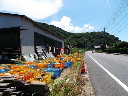 f:id:fujiwarakominka:20120728142440j:image