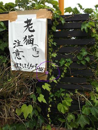 f:id:fujiwarakominka:20120829102906j:image