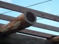 f:id:fujiwarakominka:20121004073650j:image:medium