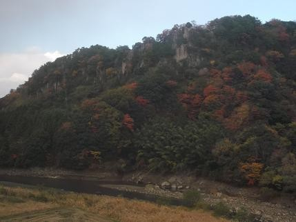 f:id:fujiwarakominka:20121114152444j:image