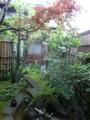 f:id:fujiwarakominka:20130618160600j:image:medium