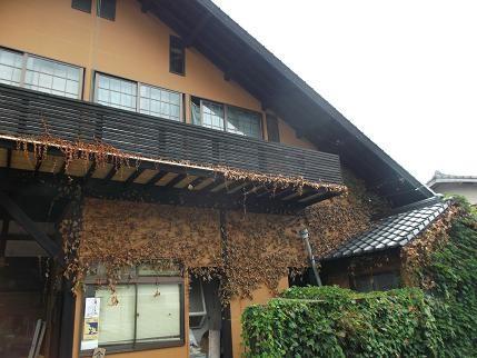 f:id:fujiwarakominka:20130823143554j:image