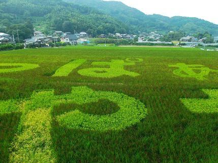 f:id:fujiwarakominka:20130914155827j:plain