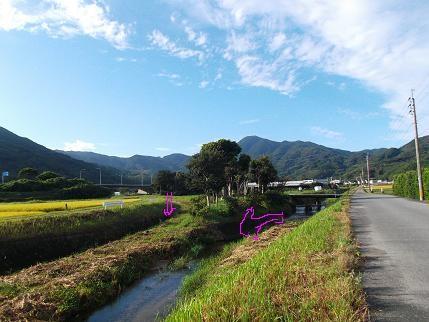 f:id:fujiwarakominka:20131006081519j:image