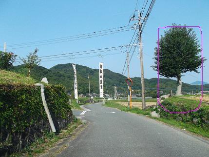 f:id:fujiwarakominka:20131014101159j:image