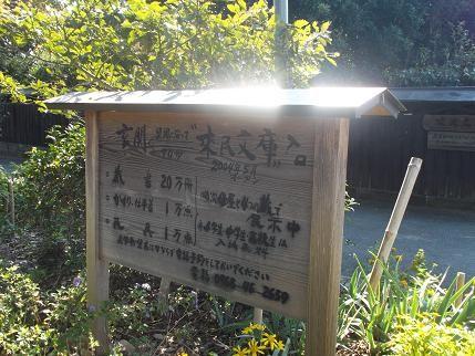 f:id:fujiwarakominka:20131114122807j:image