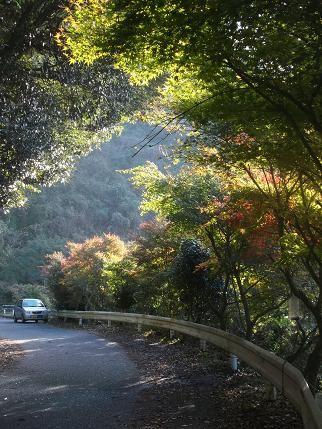 f:id:fujiwarakominka:20131115153754j:image