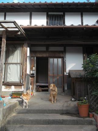 f:id:fujiwarakominka:20131207100103j:image