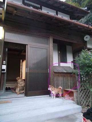 f:id:fujiwarakominka:20131222172101j:image
