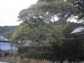 f:id:fujiwarakominka:20140210111824j:image:medium