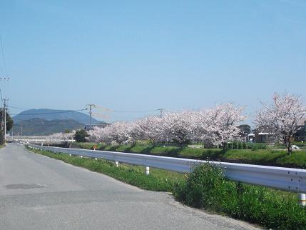 f:id:fujiwarakominka:20140401111634j:plain