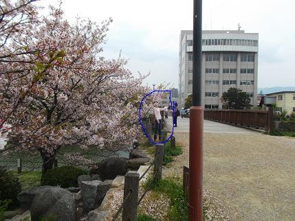 f:id:fujiwarakominka:20140403113443j:image