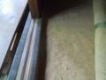 f:id:fujiwarakominka:20140511153425j:image:medium