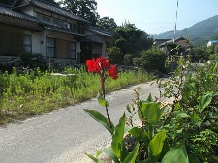 f:id:fujiwarakominka:20140711090455j:image