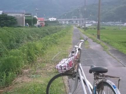 f:id:fujiwarakominka:20140714194152j:image