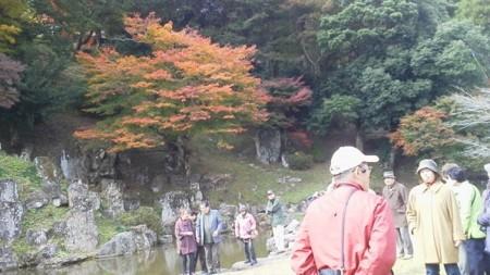 f:id:fujiwarakominka:20141113122910j:image
