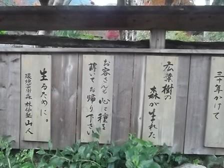 f:id:fujiwarakominka:20141123165208j:image