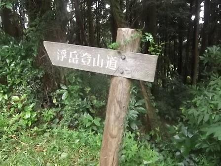 f:id:fujiwarakominka:20150719110319j:image