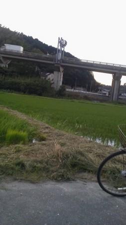f:id:fujiwarakominka:20150724192050j:image