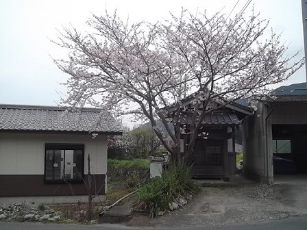 f:id:fujiwarakominka:20160330114152j:image