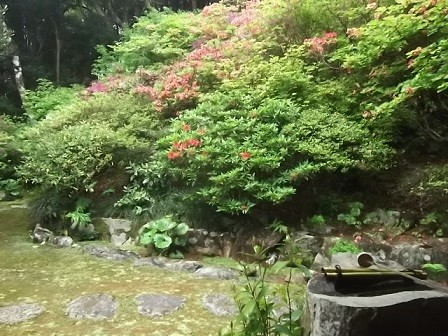 f:id:fujiwarakominka:20160424101148j:image
