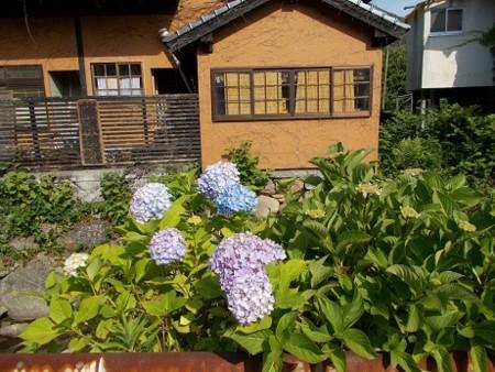 f:id:fujiwarakominka:20170530083822j:image