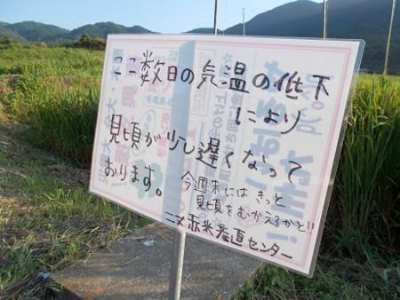 f:id:fujiwarakominka:20170908172601j:image