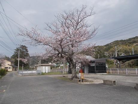 f:id:fujiwarakominka:20190330152817j:plain