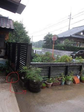 f:id:fujiwarakominka:20190806072223j:plain
