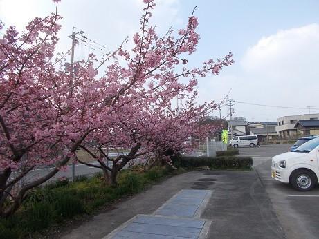 f:id:fujiwarakominka:20200210151116j:plain