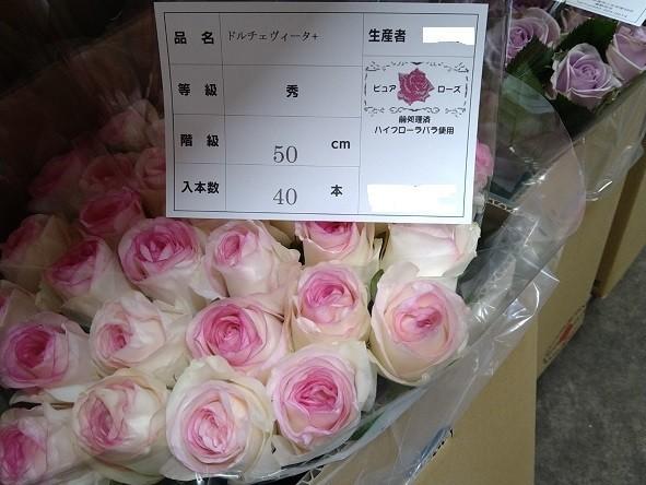 f:id:fujiwarakominka:20201116061356j:plain