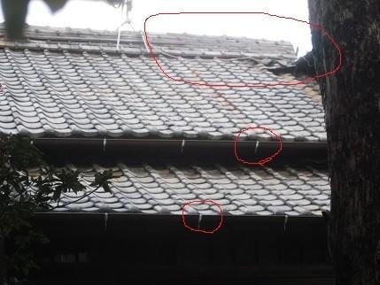 f:id:fujiwarakominka:20201220131332j:plain